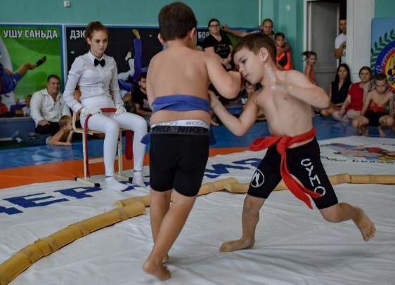 Сумо приобретает популярность в Новороссийске и проводит турниры